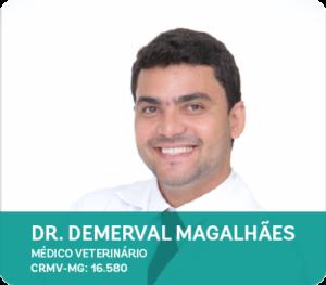 Dr. Demerval Magalhães