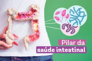 Mulher segurando na frente da barriga um modelo de um intestino com elementos gráficos representando a flora intestinal e os dizeres pilar da saúde intestinal