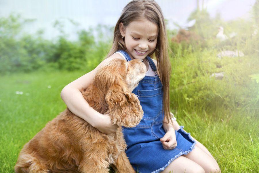 Cachorro com idade avançada e sua tutora criança ao ar livre. Ambos estão felizes mostrando como prolongar a vida do cachorro pode ser algo positivo