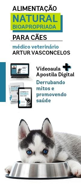 Banner do curso de alimentação natural bioapropriada para cães do médico veterinário Artur Vasconcelos.